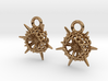 Spumellaria Earrings - Science Jewelry 3d printed