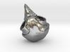 Screech Owl Skull 3d printed