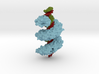 TAL effector complex with DNA 3d printed