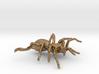 Tarantula Spider Pendant - 45 mm 3d printed