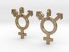 Transgender Earrings 3d printed
