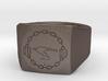 Catena Ring Unisex 3d printed
