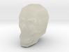 SkullMistakeOldWrong20 3d printed