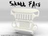 AJ30006 Skull Face Grill & Mount 3d printed