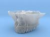 Constricted Maxilla | 3D BioModel 3d printed