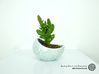 Porcelain Plant-pot in Water-Look (size small) 3d printed Porcelain Plant-pot in Water-Look (small - Gloss Celadon Green)