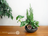Flat organic plant pot in Water-Look 3d printed Flat organic plant pot in Water-Look (Matte Black)