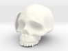 Skull Casing Raspberry Pi 2, No-ports 3d printed