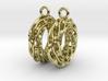 Twisted Scherk Linked 3,4 Torus Knots Earrings 3d printed