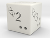 Fantasy six side dice 3d printed