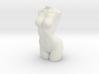 1/12 Figure Parts Woman Torso 3d printed