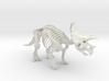 Triceratops Skeleton 3d printed