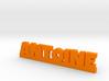 ANTOINE Lucky 3d printed