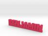 BENJAMIN Lucky 3d printed