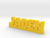 JADEN Lucky 3d printed