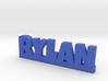 RYLAN Lucky 3d printed