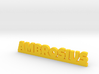 AMBROSIUS Lucky 3d printed