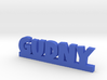 GUDNY Lucky 3d printed