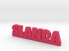SLANDA Lucky 3d printed