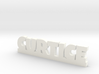 CURTICE Lucky 3d printed