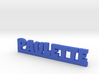 PAULETTE Lucky 3d printed