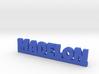 MADELON Lucky 3d printed
