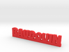 BAUDOUIN Lucky 3d printed