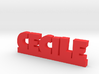 CECILE Lucky 3d printed