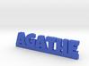 AGATHE Lucky 3d printed