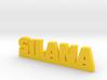 SILANA Lucky 3d printed
