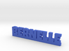 BERNELLE Lucky 3d printed