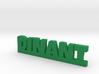 DINANT Lucky 3d printed