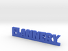 FLANNERY Lucky 3d printed