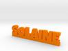 SOLAINE Lucky 3d printed
