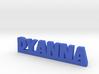 DYANNA Lucky 3d printed