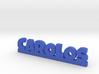 CAROLOS Lucky 3d printed