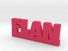 FLAN Lucky 3d printed