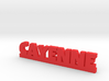 CAYENNE Lucky 3d printed