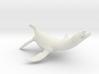 Rhomaleosaurus thorntoni 1/40 3d printed