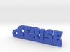 CERISE Keychain Lucky 3d printed