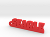 SEARLE Keychain Lucky 3d printed