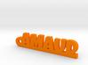 AMAUD Keychain Lucky 3d printed