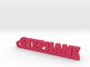 STEPHANE Keychain Lucky 3d printed