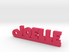 JOELLE Keychain Lucky 3d printed
