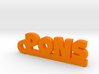 PONS Keychain Lucky 3d printed