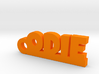 ODIE Keychain Lucky 3d printed