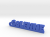 SOLENNE Keychain Lucky 3d printed