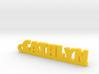 CATHLYN Keychain Lucky 3d printed