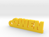 OWEN Keychain Lucky 3d printed