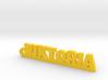 VIKTORIA Keychain Lucky 3d printed